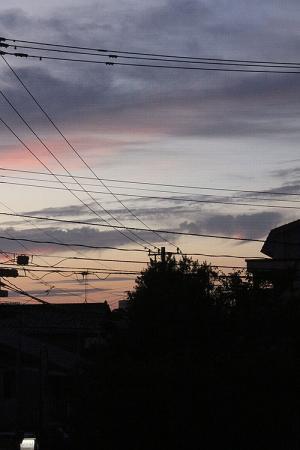 200901_9.jpg
